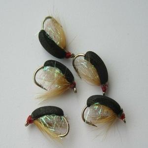 Pearly Coch Y Bonddu Beetle Dry Fly