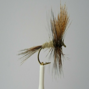 Winged March Brown Dry Fly